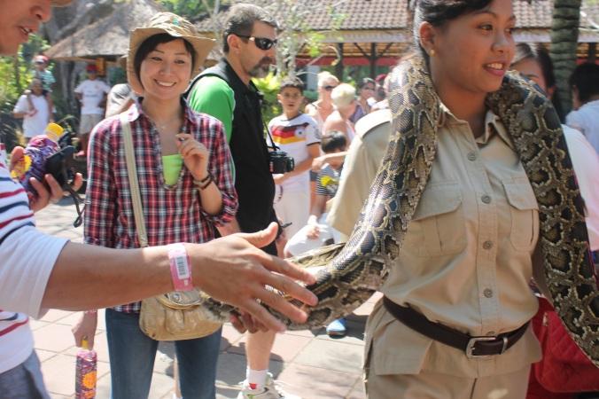 first time pegang ular piton,gede buanget..rasanya kaya pegang kulit ayam tapi lebih kenyal
