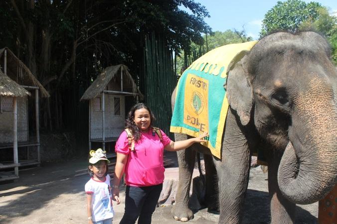 keponakanku,aku dan si gajah bella